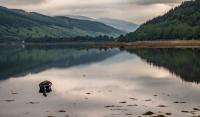 Schotland AS